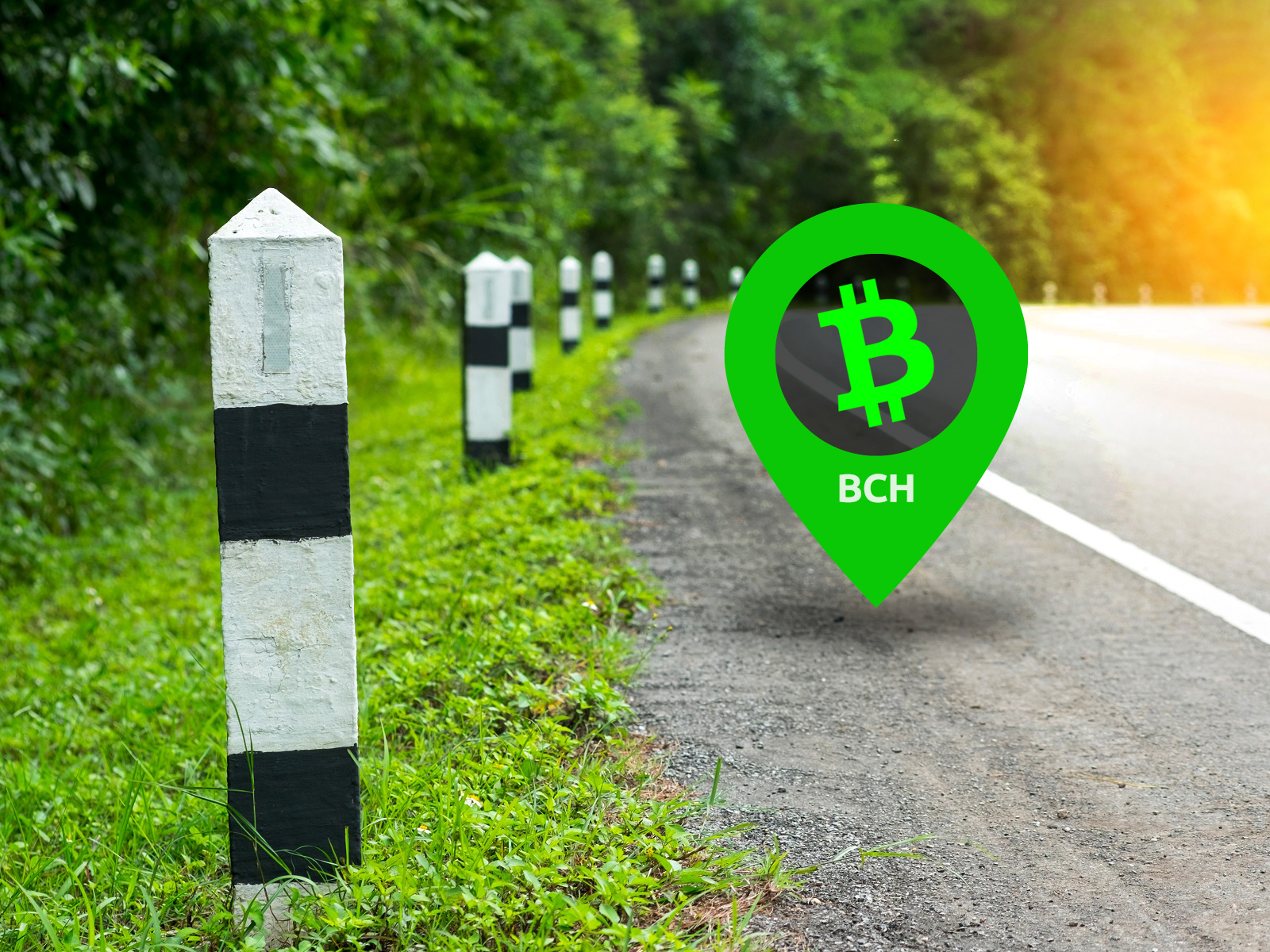 Bitcoin Cash Milestones and Liberland's Merit in the Weekly Video Update From Bitcoin.com